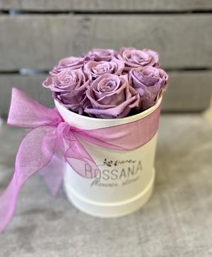 FLOWER BOX T7 Rossana Collection LILLA