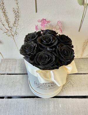 FLOWER BOX T7 Rossana Collection NERO