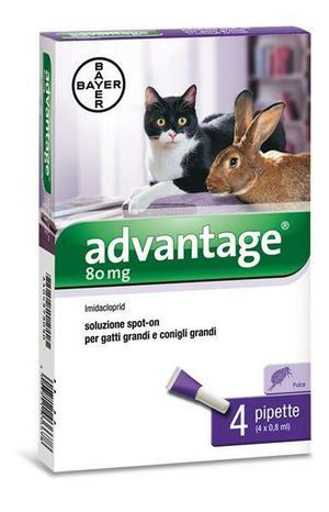 Advantage Spot On per Gatti e Conigli 80mg