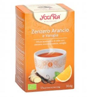 Zenzero Ariancia Vaniglia 30gr Yogitea