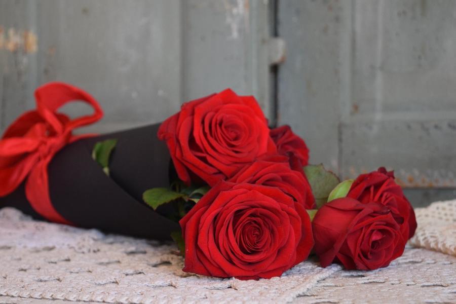 Cono rose rosse