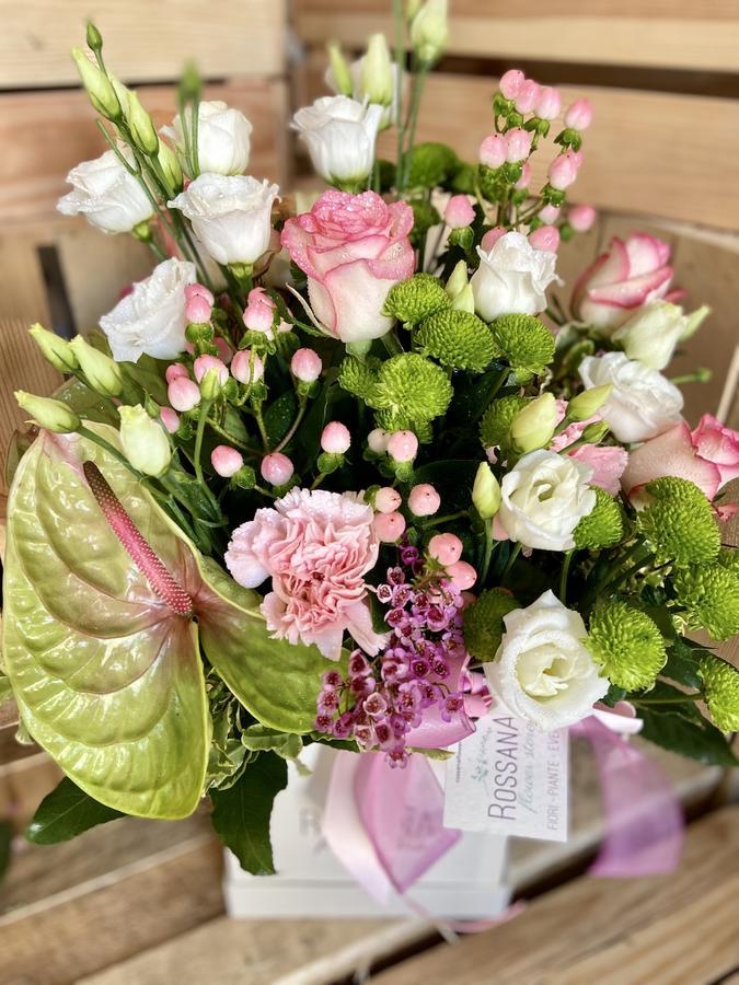 Flower Box Anthurium