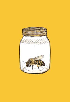 GIULIA BELCASTRO in arte MATERIAE, STAMPA FORMATO A4 firmata: PRISONER BEE