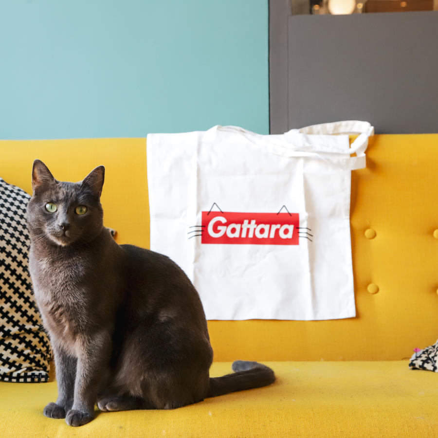 Shopper Gattara