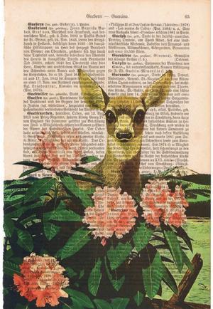 "Art On Words:""Curious Fawn"""