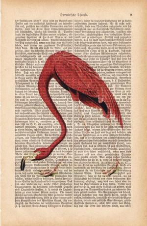 "Art On Words:""Flamingo"""