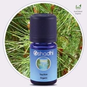 Oshadhi - Pino marittimo olio essenziale bio