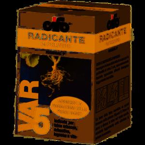 Radicante Rigenal P 100 gr