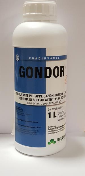 Coadiuvante Gondor 1L