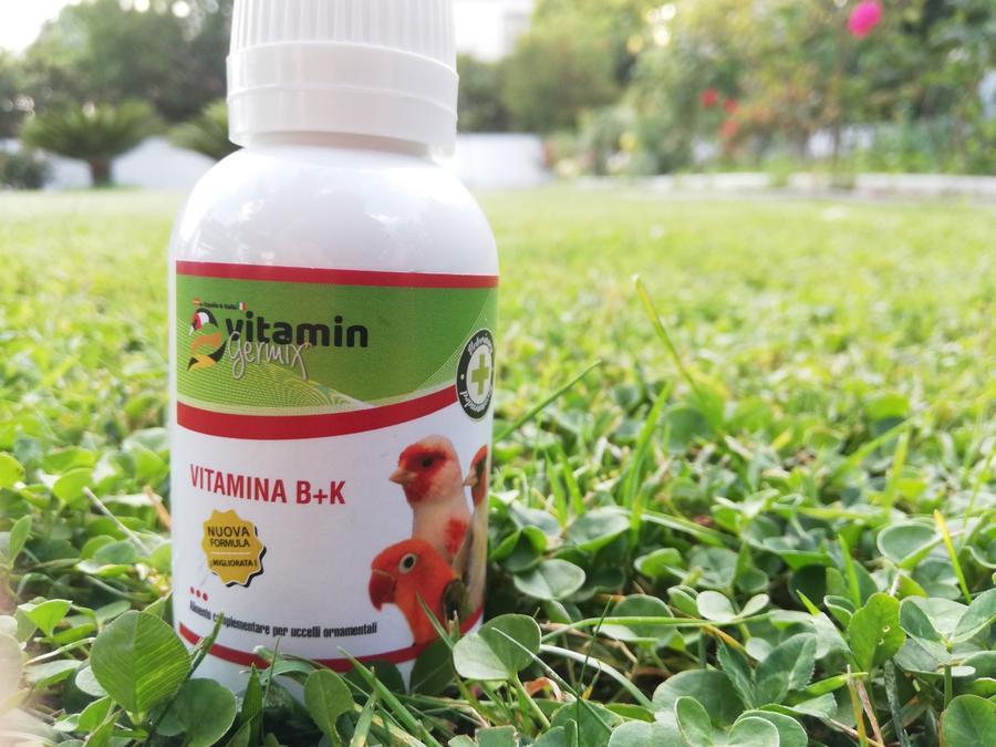 Vitamina BK