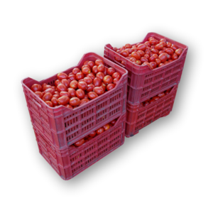 Pomodori da salsa bio