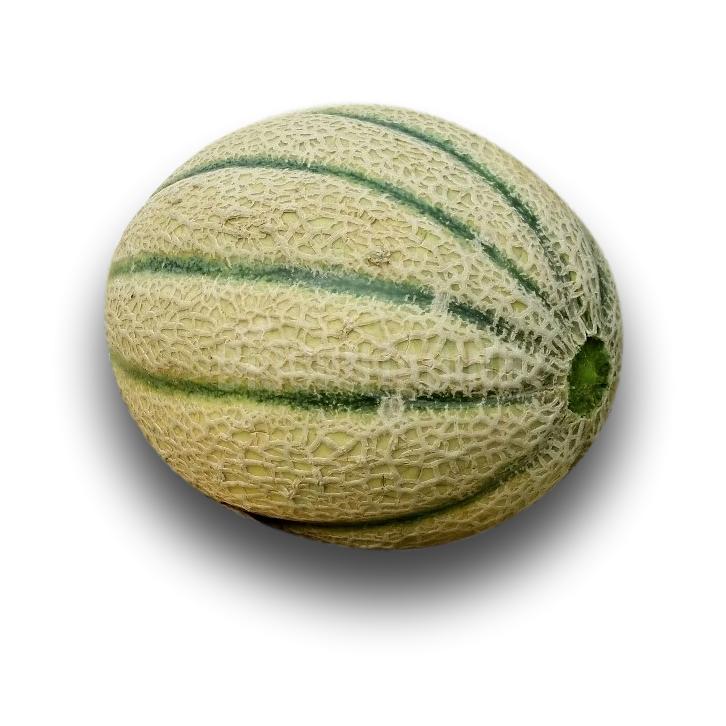 Melone classico bio