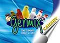Germix Canary