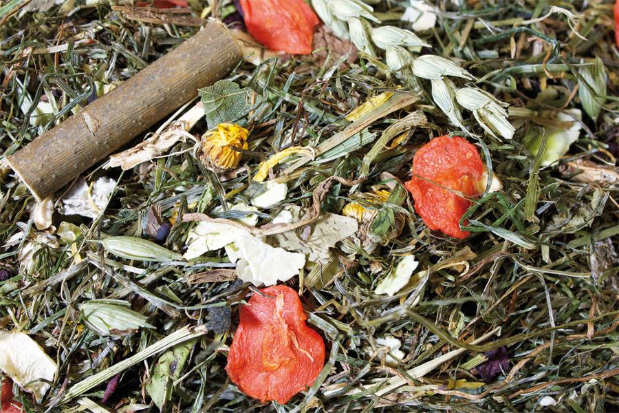 Jr Farm Grainless Herbs Conigli - 400 Gr.