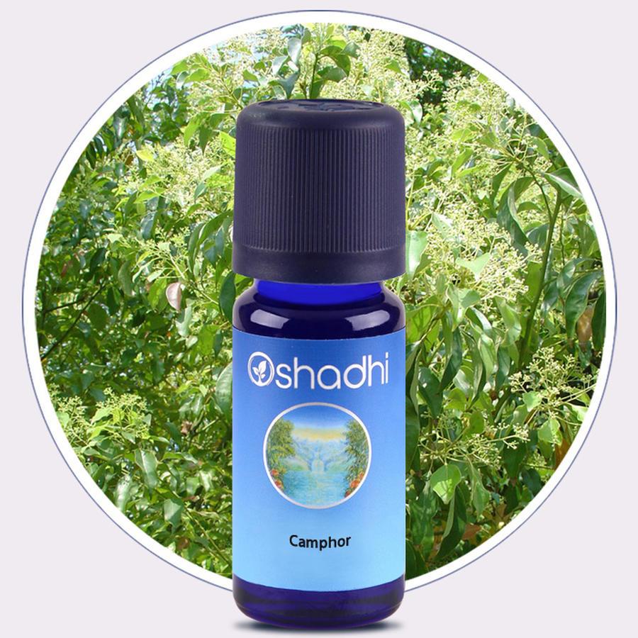 Oshadhi - Canfora olio essenziale