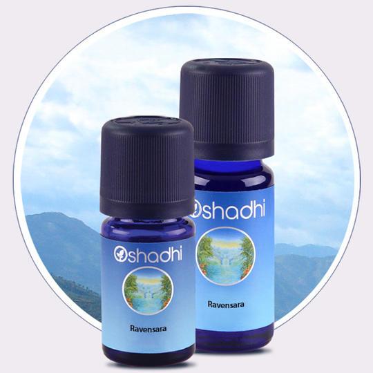 Oshadhi - Ravensara aromatica olio essenziale