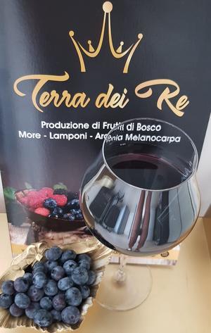 Integratore alimentare BlueberryAronia, Mirtillo e Aronia, 900 ml, 3 bottiglie da 300 ml