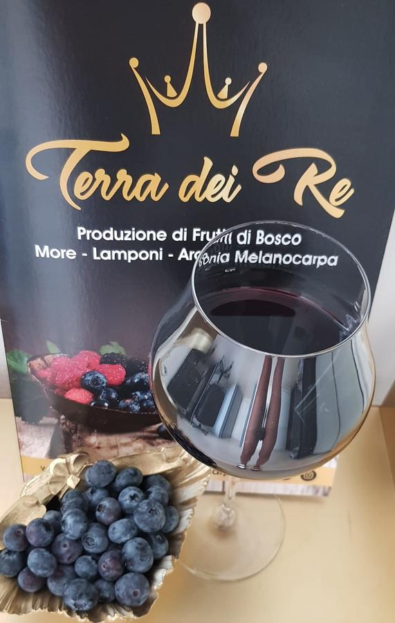 Integratore alimentare BlueberryAronia, Mirtillo e Aronia, 900 ml, 3 bottiglie da 300 ml