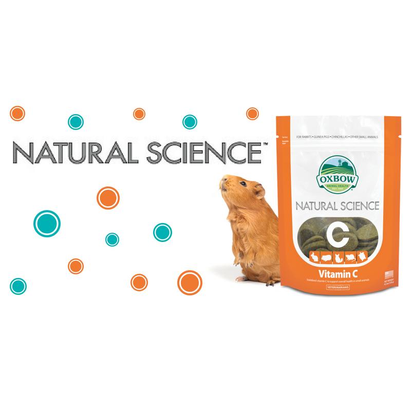 Vitamin C – Alimento Complementare per Piccoli Erbivori