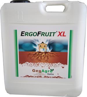 ErgoFruit XL aminoacidi per trattamenti fogliari tanica da 5 litri
