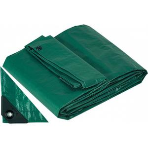 Telo Telone Occhiellato 4 x 6 mt Antistrappo Impermeabile colore Verde Papillon 200 gr / MQ Copripiscina invernale