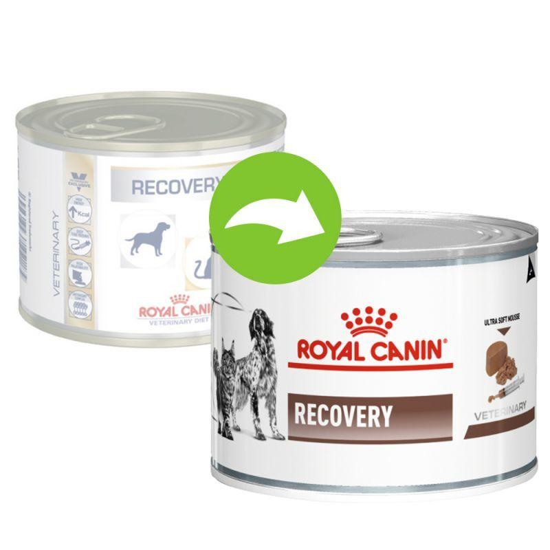 Royal Canin Recovery Veterinary Diet Lattina da 195 Cibo Umido Per Cani e Gatti