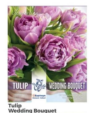 Bulbi di Tulipano Wedding Bouquet confezione da 10 pz