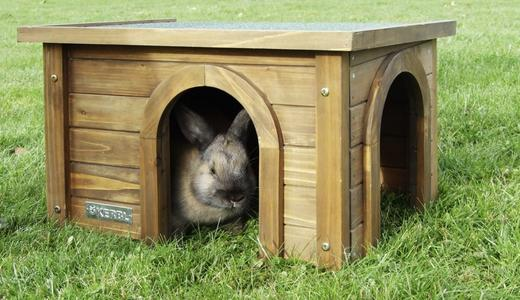 Casetta in Legno Large per Roditori e Conigli 45 x 32 x 27cm