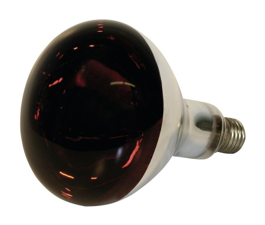 Lampada infrarossi Rossa 150w a vetro duro per riscaldamento animali
