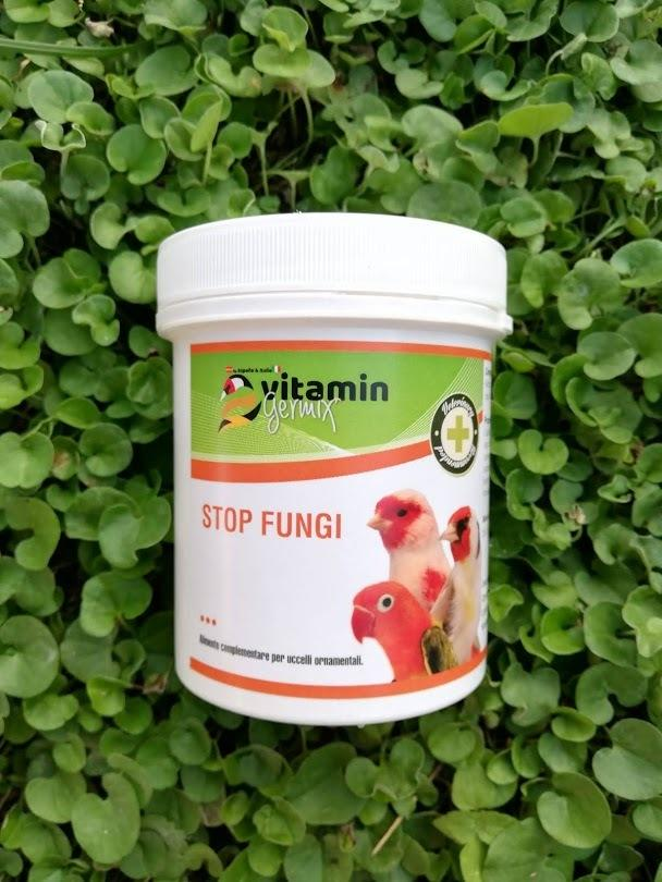Stop Funghi