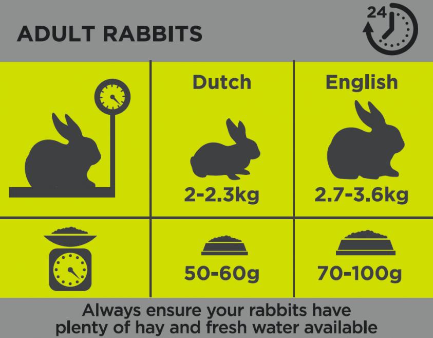 Burgess Adult Rabbit Nature's Blend Nuggets - 1,5 kg.