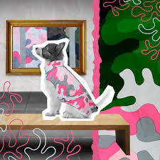 Record Pollock Cappottino Impermeabile Per Cani Rosa Mimetico Taglia XXL 70 cm