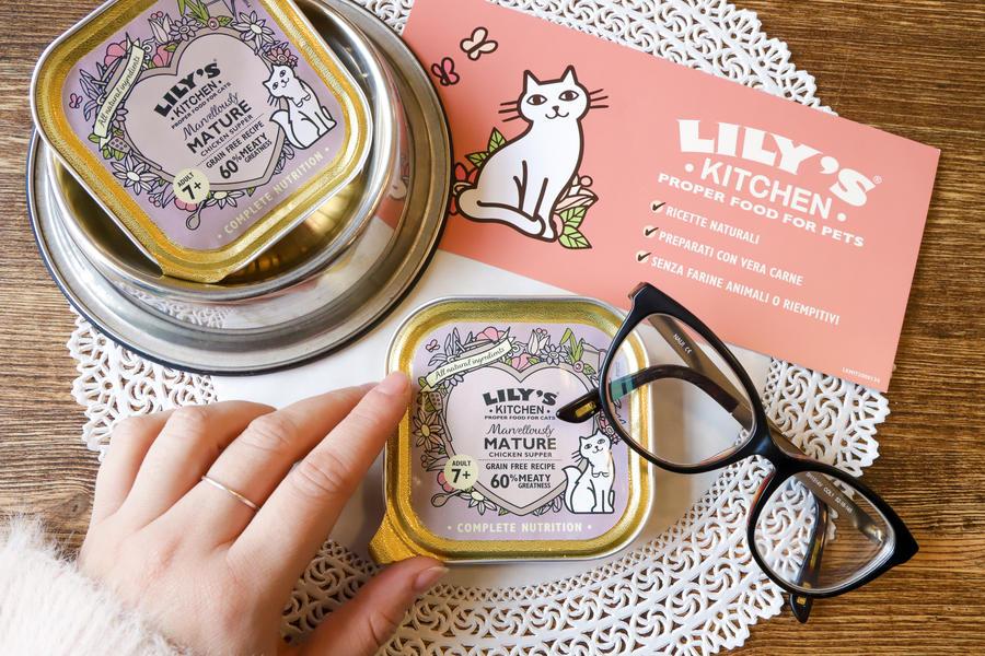 Vaschetta per gatti Senior