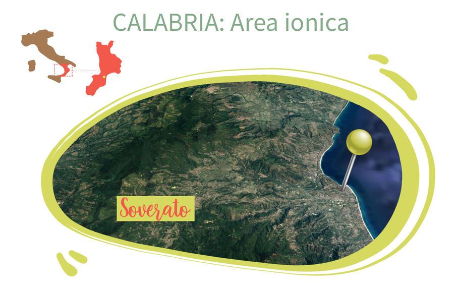 Piccantino Vegetale Calabro, Migliarese, 230 gr