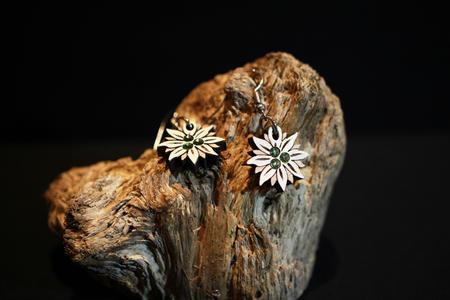 Orecchini stella alpina dipinta