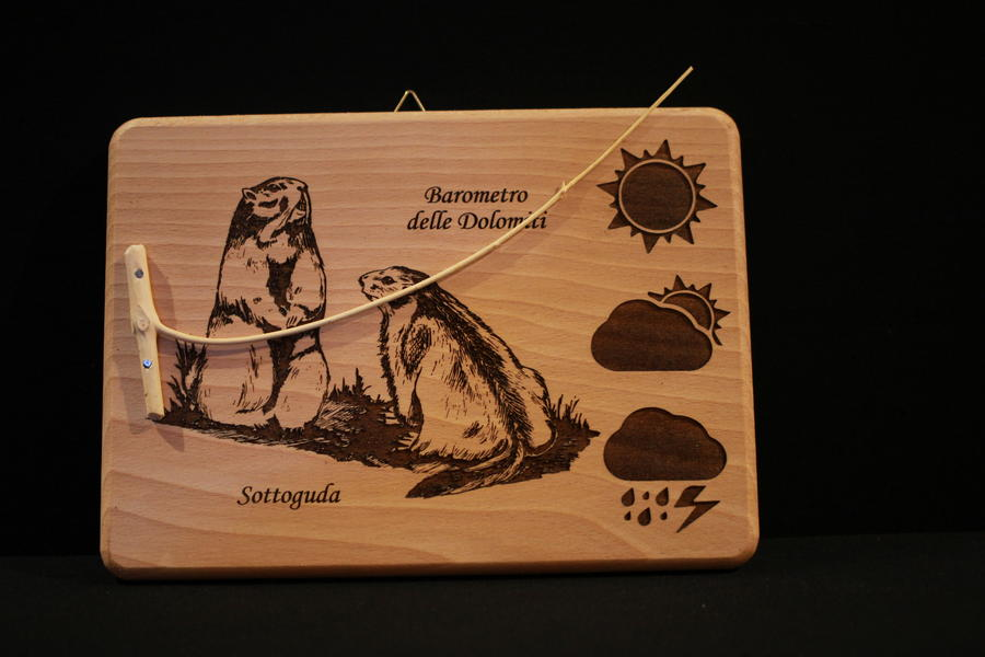 Barometro naturale marmotte