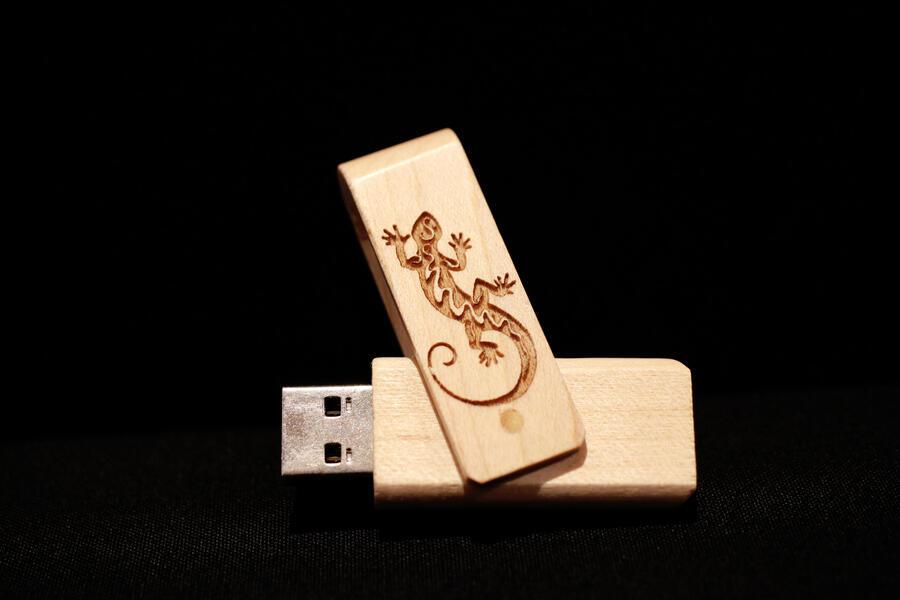 Chiavetta USB geko