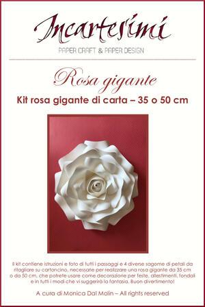 Kit fai da te rosa gigante di carta Ø 35 e 50 cm