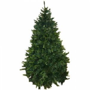 Albero di Natale Los Angeles H240 cm