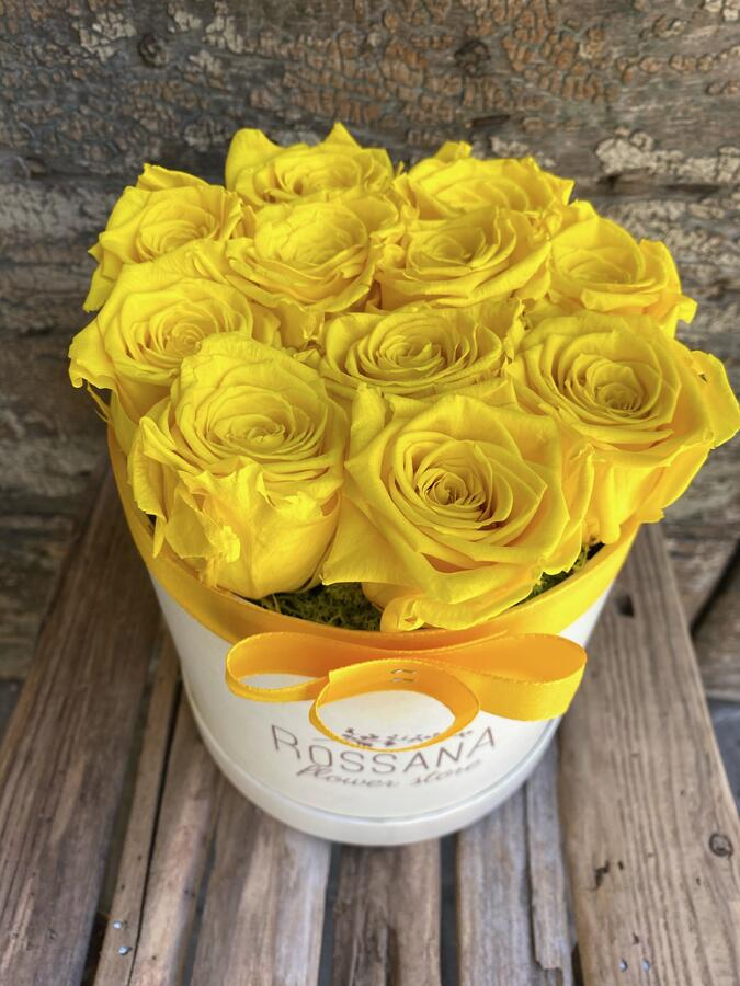 FLOWER BOX T12 Rossana Collection GIALLO