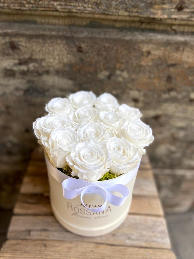 FLOWER BOX T12 Rossana Collection Bianco