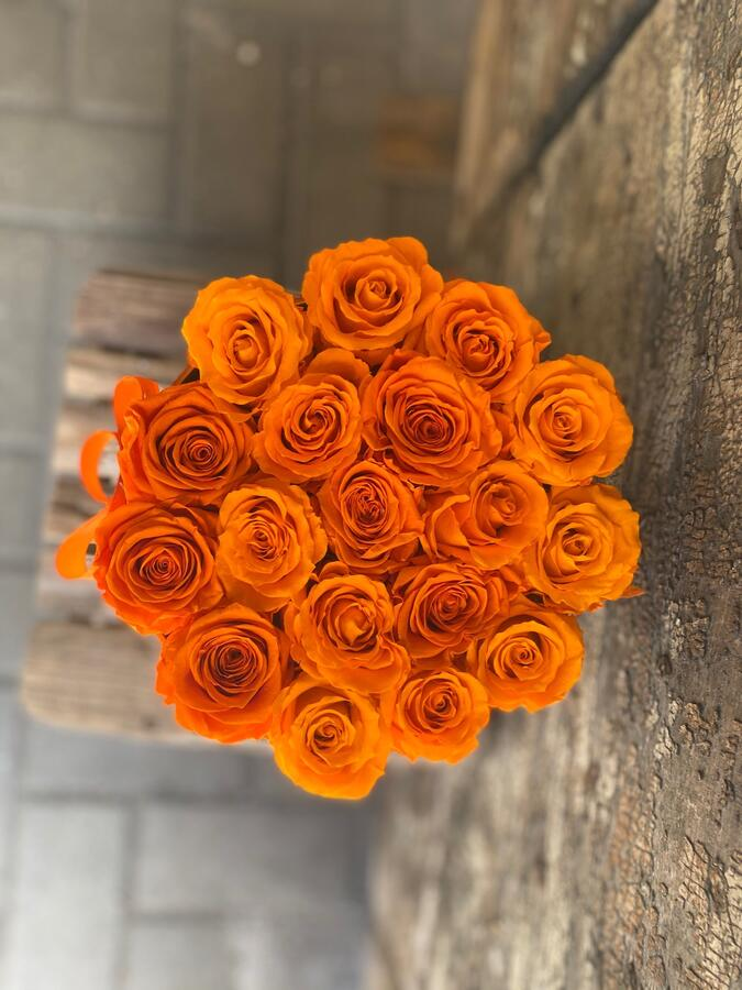 FLOWER BOX T18 Rossana Collection ARANCIO