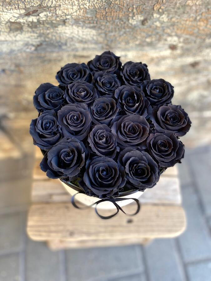 FLOWER BOX T18 Rossana Collection NERO