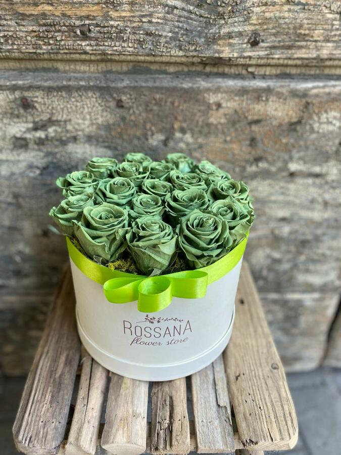 FLOWER BOX T18 Rossana Collection VERDE