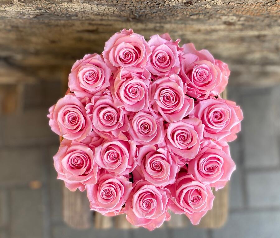 FLOWER BOX T18 Rossana Collection ROSA