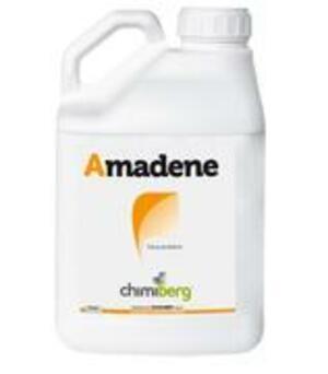 Esca Proteica Amadene 500 ml