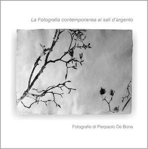 La fotografia contemporanea ai sali d'argento, Pierpaolo De Bona - Catalogo
