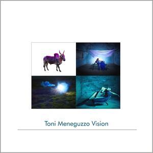 Vision, Toni Meneguzzo - Catalogo
