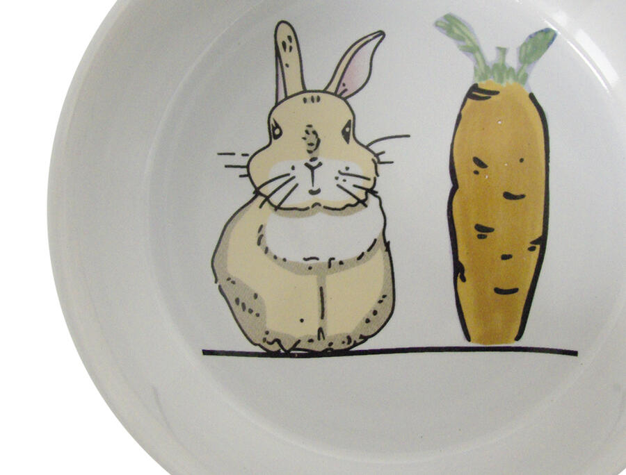 "Nobby ciotola ceramica - Rodent Ceramic bowl ""Carrot Plus"" Bianco- 300 ml."