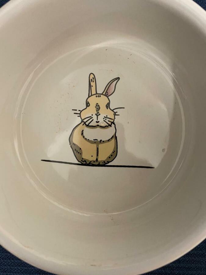 "Nobby Ciotola - Rodent Ceramic bowl ""Rabbit""  - Rosa - 300 ml."